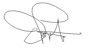 dp_signature_2
