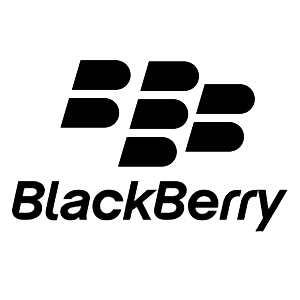 The Blackberry Verdict Is Not Surprising
